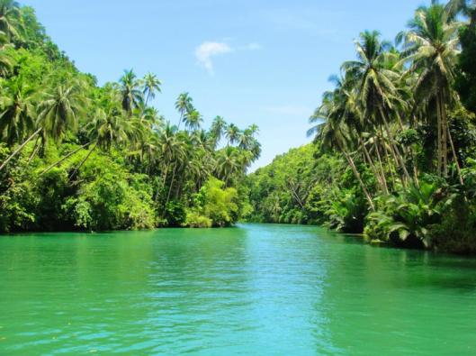 Loboc_river.png